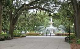 Forsyth Park with the fountain royalty free stock photo