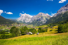 Famous Grindelwald valley, green forest, Alps chalets and Swiss Alps, Berner Oberland, Switzerland Royalty Free Stock Image