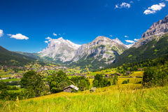Famous Grindelwald valley, green forest, Alps chalets and Swiss Alps, Switzerland Royalty Free Stock Photos