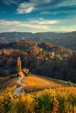 Famous Heart shaped wine road in Slovenia, view from Spicnik ne stock photos