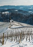 Famous Heart shaped wine road in Slovenia in winter, Royalty Free Stock Photography