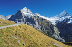 Famous hiking trail from First to Grindelwald (Bernese Alps, Switzerland). Royalty Free Stock Image
