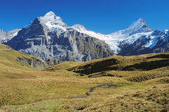 Famous hiking trail from First to Grindelwald (Bernese Alps, Switzerland). Stock Photo