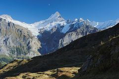 The famous hiking trail from First to Grindelwald (Bernese Alps, Switzerland). Royalty Free Stock Photography