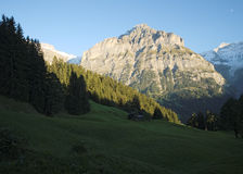 The famous hiking trail from First to Grindelwald (Bernese Alps, Switzerland). Royalty Free Stock Photo
