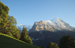 The famous hiking trail from First to Grindelwald (Bernese Alps, Switzerland). Stock Image