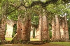 Historic Sheldon Church ruins in Charleston, South Carolina. Famous, historic Sheldon Church ruins in Charleston, South Carolina royalty free stock image