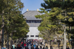 The famous and historical TodaiJi in Nara Park Royalty Free Stock Photography