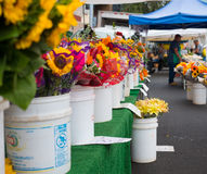 Famous Hollywood Farmers Market Fresh Cut Flowers Vendor Stand. Famous Sunday Hollywood Farmers Market fresh cut flowers vendor stand featuring freshly picked Stock Photography