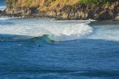 Honolua Bay, Maui, Hawaiian islands royalty free stock images