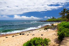 Famous Hookipa beach, popular surfing spot filled with a white sand beach, picnic areas and pavilions. Maui, Hawaii. Stock Image