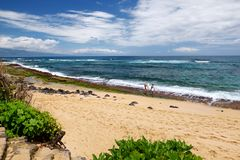 Famous Hookipa beach, popular surfing spot filled with a white sand beach, picnic areas and pavilions. Maui, Hawaii. USA Royalty Free Stock Images