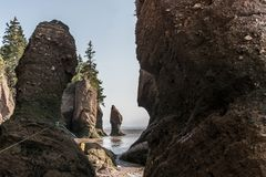 Famous Hopewell Rocks geologigal formations at low tide biggest tidal wave Fundy Bay New Brunswick Canada Royalty Free Stock Photo