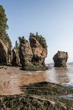 Famous Hopewell Rocks geologigal formations at low tide biggest tidal wave Fundy Bay New Brunswick Canada Stock Image