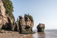 Famous Hopewell Rocks geologigal formations at low tide biggest tidal wave Fundy Bay New Brunswick Canada Royalty Free Stock Photos