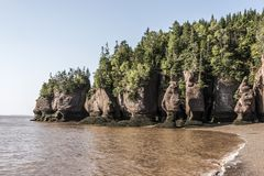 Famous Hopewell Rocks geologigal formations at low tide biggest tidal wave Fundy Bay New Brunswick Canada Royalty Free Stock Photography