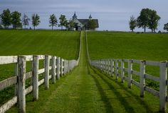 The famous horse country grass lands at Manchester horse farm in lexington kentucky. White fences dot the farm landscape in bourbon country stock photography
