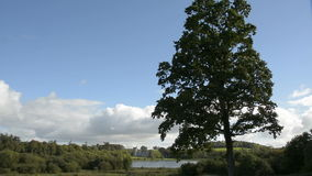 Famous Irish Public Castle , Dromoland and golf club, County Clare, Ireland stock video footage