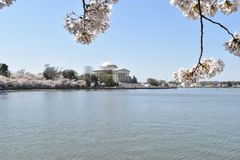Famous Jefferson Monument on Lake Tidal Basin in Washington D.C in the USA stock photography