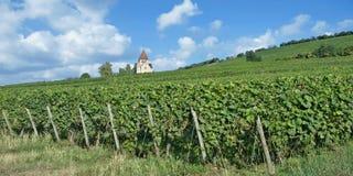 Kreuzkapelle Church,Wissberg,Rhinehessen wine region,Germany. Famous Kreuzkapelle Church on Wissberg in Rhinehessen wine region,Rhineland-Palatinate,Germany royalty free stock photography