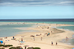 The famous lagoon in Risco El Paso at Playas de Sotavento. Fuerteventura royalty free stock photography