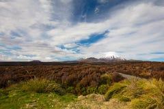 Mt Ngauruhoe Landscape Stock Images