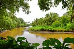 Famous Lawai stream in Allerton Garden Royalty Free Stock Photo