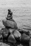 Famous little mermaid statue Den lille Havfrue of Copenhagen, Denmark. A side angle photo of the Famous little mermaid statue Den lille Havfrue of Copenhagen Stock Photo