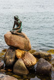 Famous little mermaid statueDen lille Havfrue of Copenhagen, Denmark. A side photo of the Famous little mermaid statueDen lille Havfrue of Copenhagen, Denmark Royalty Free Stock Photography