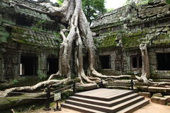 Famous location at Angkor Wat temple Stock Images