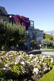 The famous Lombard Street in San Francisco Royalty Free Stock Image