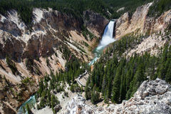 The famous Lower Falls in Yellowstone National Park Royalty Free Stock Photos