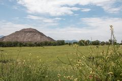 Famous and majestuous Mexican archaeological site; sun pyramid. During Mexico`s rainy season, green grass and flowers Stock Photo