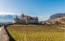 Famous medieval Aigle Castle and vineyard in the spring. Switzerland. View on the famous medieval Aigle Castle, Chateau d`Aigle, from the and vineyard in the royalty free stock photos