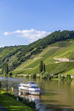 Famous Moselle Sinuosity in Trittenheim with  cruise ship Stock Photography
