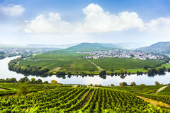 Famous Moselle Sinuosity with vineyards Stock Photos