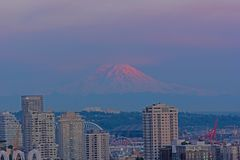 Famous mountain in pastel hues of skies is lit by sunlight. Urban Seattle panorama and Mount Rainier on horizon at sunset, Washington, USA royalty free stock image