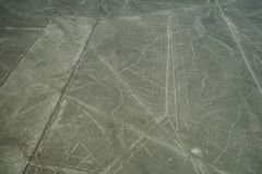 The famous Nazca Lines in Peru, here you can see the figure of a spider. royalty free stock images