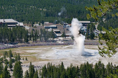 Famous Old Faithful Geyser while erupting taken from the Overlook stock photography