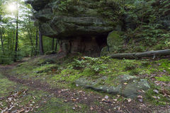 The famous Palatinate Forest in Germany Stock Photography