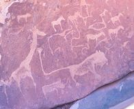 The famous prehistoric rock engravings at Twyfelfontein, tourist attraction and travel destination in Namibia, Africa. stock photo