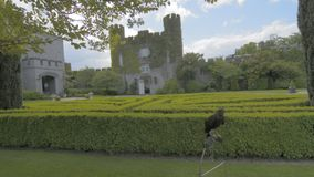 Famous Public Tourist Attraction In Ireland. Castle , Dromoland County Clare, Ireland -Flat video profile. stock video footage