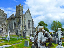 Famous Quin Abbey in Ireland Royalty Free Stock Photo