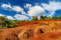 Famous red dirt of Waimea Canyon in Kauai Stock Images