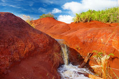 Famous red dirt of Waimea Canyon in Kauai. Hawaii Royalty Free Stock Photos