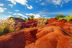 Famous red dirt of Waimea Canyon in Kauai Royalty Free Stock Image