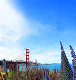 Famous red suspension Golden Gate Bridge in San Francisco, USA Stock Photos