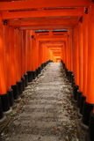 Famous red tunnel in Kyoto Royalty Free Stock Image
