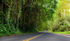 Famous Road to Hana fraught with narrow one-lane bridges, hairpin turns and incredible island views, Maui, Hawaii Stock Images