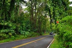 Famous Road to Hana fraught with narrow one-lane bridges, hairpin turns and incredible island views, Maui, Hawaii Stock Image